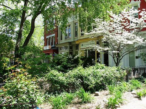 historicstreetscapegreen