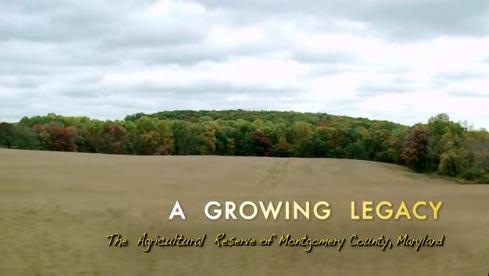 agrowinglegacy500w