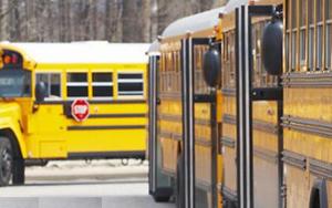 schoolbuses300w