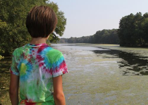 A 10 year old boy explores an algae-covered portion of Beaverdam Creek in Salisbury, MD (Photo credit Chesapeake Bay Program)