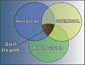 soilhealthgraphic280