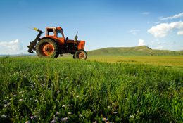 Farmers Surveyed on Composting