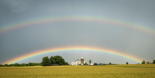 farm with rainbow