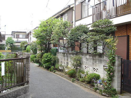 small houses with alley